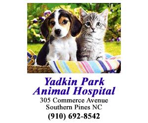 yadkin park animal hospital 300x250